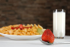 Breakfast. Fruit salad with milk Stock Photography