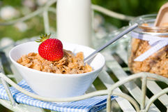 Breakfast Al Fresco Stock Images