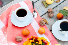 Breakfast autumn afternoon tea, nuts, apples and plums Stock Images