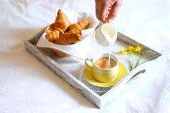 new breakfast tray gray - photo #24