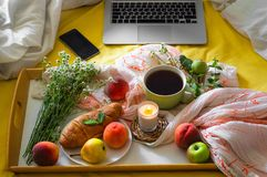 Breakfast in bed, a tray of tea, croissants, fruit, flowers and laptop Morning. Blogger theme. concept of working at home.  royalty free stock photography
