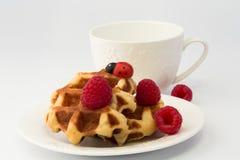 Breakfast Belgian waffles homemade raspberry dessert Royalty Free Stock Photography