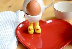 Breakfast Boiled Egg Stock Photos