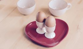 Breakfast Boiled eggs Stock Images