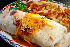 Breakfast Burrito. Fresh salsa and crisp fried potatoes complete this delicious breakfast Royalty Free Stock Photos