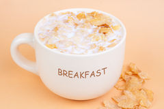 Breakfast cereal Royalty Free Stock Images