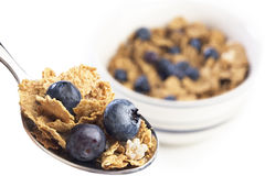 Breakfast cereal with blueberries Royalty Free Stock Images
