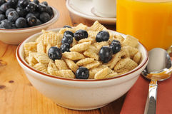 Breakfast cereal with blueberries Royalty Free Stock Photography