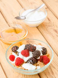 Breakfast cereal bowl with berries and yogurt Royalty Free Stock Photo