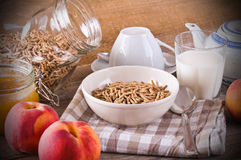 Breakfast cereal. Royalty Free Stock Photo