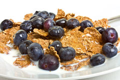 Breakfast Cereal Medley Royalty Free Stock Image