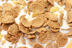 Breakfast cereal with milk Stock Photography