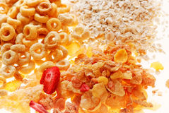 Breakfast Cereal Variety Royalty Free Stock Images