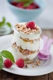 Breakfast cereals. With fresh yogurt and honey Royalty Free Stock Photos