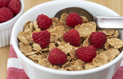 Breakfast cereral Stock Image
