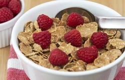 Breakfast cereral Stock Image