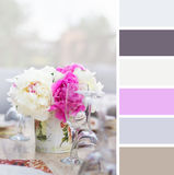 Breakfast, colour palette swatches. Stock Photos