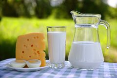 Milk jug. a glass of milk, cheese and eggs stock photo