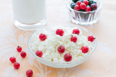 Breakfast with cottage cheese Royalty Free Stock Photo