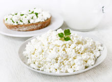 Breakfast with curd cheese Stock Image