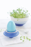 Breakfast with Easter egg and cress Royalty Free Stock Photos