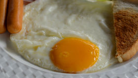 Breakfast with egg Stock Images