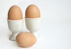 Breakfast Eggs. Three hard boiled breakfast eggs on plain background Stock Images