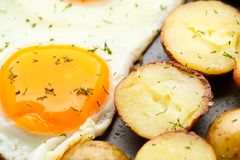 Breakfast with eggs, sausage and potato Royalty Free Stock Photo