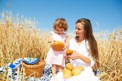 Breakfast in field Stock Images