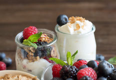 Breakfast with Fresh greek yogurt, muesli and berries Stock Images
