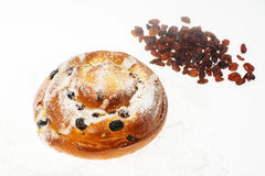 Breakfast. Fresh sweet bun with powdered sugar and raisins on wh Royalty Free Stock Image