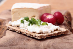 Breakfast with fresh vegetables. Breakfast with cottage, blue cheese and fresh radish on the cutting board Stock Photography