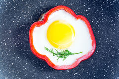 Breakfast fried egg a sprig of fresh dill inside the red pepper in the pan closeup Royalty Free Stock Image