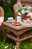 Breakfast at the garden with tea. Stock Photography
