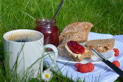 Breakfast on the Grass Royalty Free Stock Photography