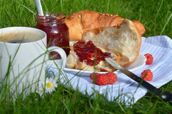 Breakfast on the Grass Stock Images