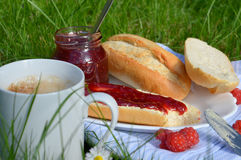 Breakfast on the Grass Stock Image