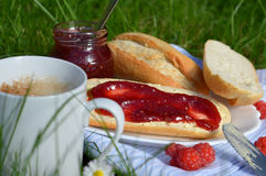 Breakfast on the Grass Royalty Free Stock Images