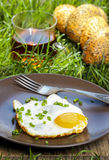 Breakfast on the grass Royalty Free Stock Image