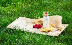 Breakfast on a green meadow. Smoothies and homemade waffles with raspberries. Seasonal concept. Stock Images