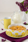 Breakfast including muesli and milk Royalty Free Stock Photos
