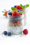 Breakfast in a jar, chia with berries and oat flakes Royalty Free Stock Photos