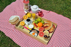 Breakfast on a lawn Royalty Free Stock Photography
