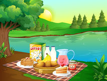 Breakfast on mat by the river. Illustration Stock Photography