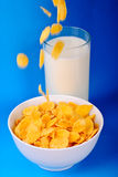 Breakfast from milk cornflakes Stock Photography