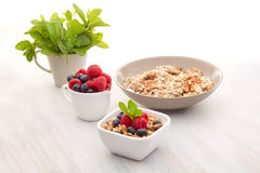Breakfast of muesli and berries Stock Image