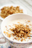 Breakfast - Muesli with milk Royalty Free Stock Image