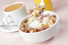 Breakfast with muesli and milk Royalty Free Stock Photo