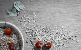 Breakfast with Muesli and raspberries royalty free stock photography