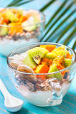 Breakfast with muesli, yoghurt, tropical fruits royalty free stock photos